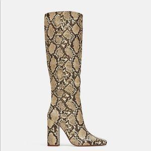 Snake print Zara boots